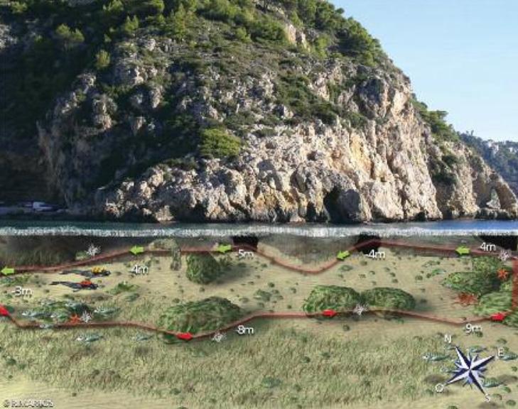 Ruta de snorkel en la Cala Granadella propuesta en la guía de buceo de la Comunidad Valenciana