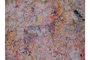 imagen de pinturas rupestres Almansa albacete