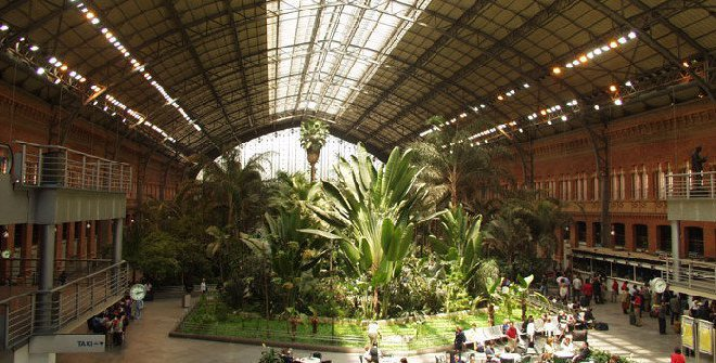imagen de Jardín tropical de la Estación de Atocha, Madrid