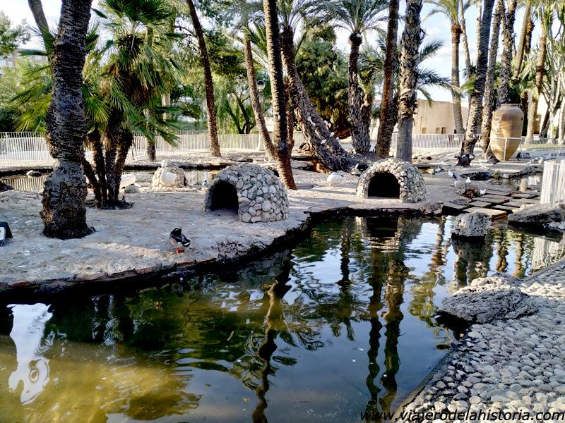 imagen de Estanque en el Parque Municipal de Elche, Alicante
