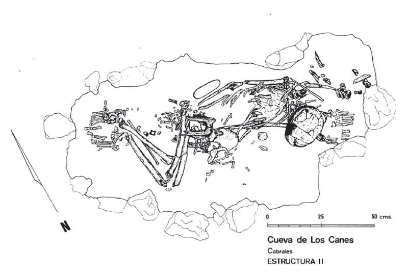 Cueva de los Canes, Asturias